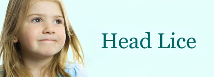 P-infectHeadLice-enHD-AR1